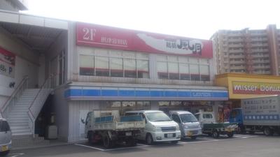DSC_0727 (1).JPG